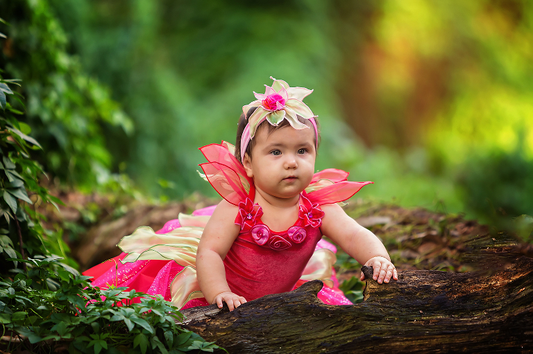 Little Wood Fairy